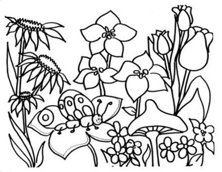 Butterfly Coloring Sheets: September 2012